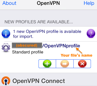 Importing an OpenVPN client setup profile